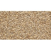 Солод Pilsner malt (Viking malt), 1КГ